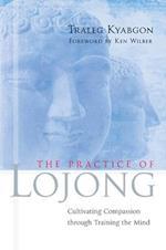 The Practice of Lojong af Traleg Kyabgon
