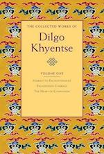 The Collected Works of Dilgo Khyentse af Matthieu Ricard, Dilgo Khyentse