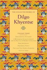 The Collected Works of Dilgo Khyentse af Dilgo Khyentse, Matthieu Ricard