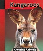Kangaroos af Anna Rebus