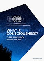 What Is Consciousness? (New Paradigm Book)