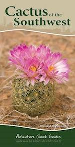 Cactus of the Southwest