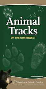 Animal Tracks of the Northwest (Adventure Quick Guides)