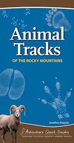Animal Tracks of the Rocky Mountains (Adventure Quick Guides)