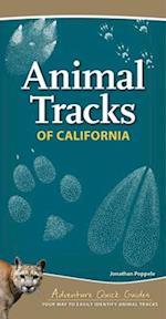 Animal Tracks of California (Adventure Quick Guides)