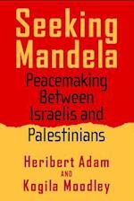 Seeking Mandela (Politics, History, and Social Change)