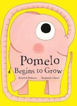 Pomelo Begins to Grow af Benjamin Chaud