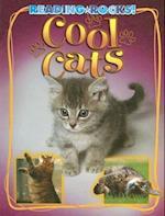 Cool Cats (Reading Rocks!)