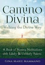 Camino Divina - Walking the Divine Way