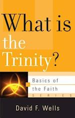 What Is the Trinity? af David F. Wells