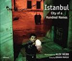 Alex Webb: Istanbul