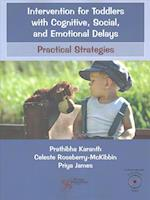 Intervention for Toddlers with Cognitive, Social, and Emotional Delays