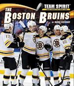 Boston Bruins, the (Team Spirit)