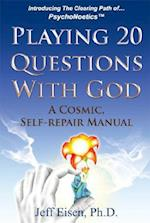 Playing 20 Questions with God