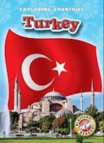 Turkey af Lisa Owings