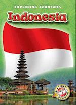 Indonesia af Lisa Owings