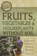 How to Grow Fruits, Vegetables & Houseplants Without Soil (Back to Basics)