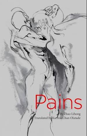 Bog, paperback Pains af Zhao Lihong