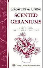 Growing & Using Scented Geraniums