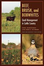 Beef, Brush, and Bobwhites (Perspectives on South Texas, Sponsored by Texas A&M University-Kingsville)