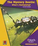 The Mystery Beetle (iMath Readers Level B)