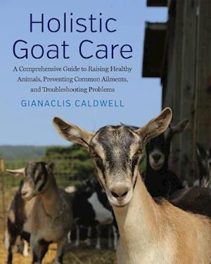 Bog, hardback Holistic Goat Care af Gianaclis Caldwell