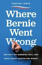 Where Bernie Went Wrong