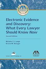 Electronic Evidence and Discovery