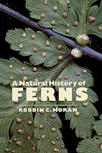 A Natural History of Ferns: A Natural History of Ferns