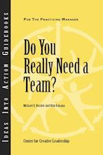 Do You Really Need a Team?: