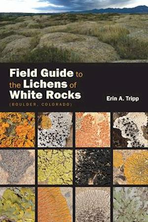 Field Guide to the Lichens of White Rocks (Boulder, Colorado)