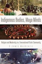 Indigenous Bodies, Maya Minds (Ims Studies on Culture and Society)
