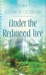 Under the Redwood Tree