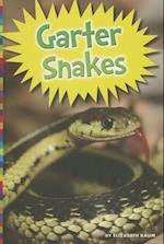 Garter Snakes (Snakes)