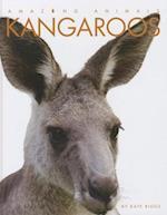 Kangaroos af Kate Riggs
