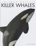 Killer Whales (Amazing Animals)