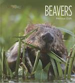 Beavers (Living Wild)