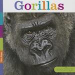 Gorillas (Seedlings)