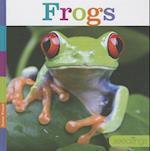 Frogs (Seedlings)