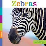 Zebras (Seedlings)