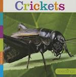 Crickets af Laura K. Murray