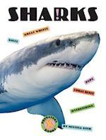 Sharks (X Books Predators)