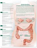 Understanding Irritable Bowel Syndrome Anatomical Chart