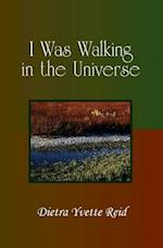 I Was Walking in the Universe
