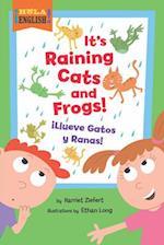 It's Raining Cats and Frogs/Illueve Gatos y Ranas (Hola English)