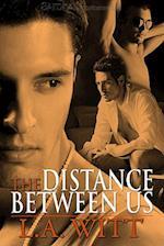 The Distance Between Us af L. A. Witt
