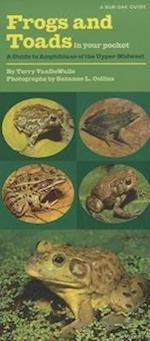 Frogs and Toads in Your Pocket (Bur Oak Guide)