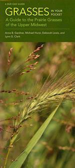 Grasses in Your Pocket (A Bur Oak Guide, nr. 26)