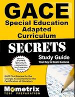 Gace Special Education Adapted Curriculum Secrets Study Guide