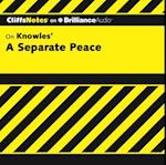Separate Peace (Cliffsnotes)
